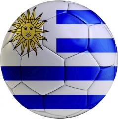uruguaydrapeau.jpg