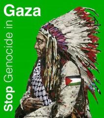fidel castro,palestine